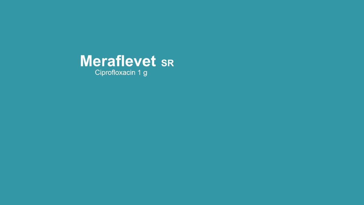 meraflevet-1